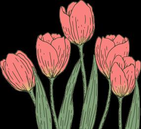 акция на избранные квесты 8 марта