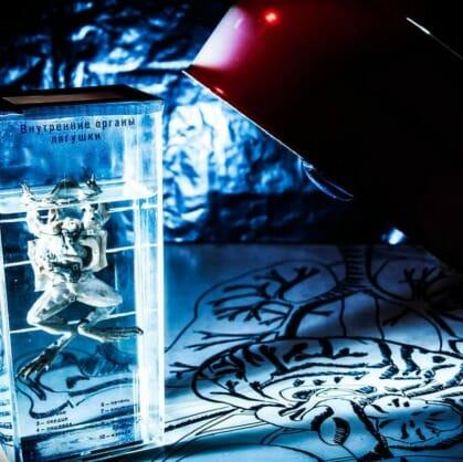 Главное изображение для квеста Логово