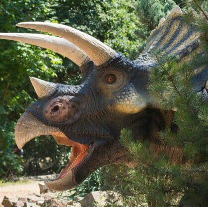 превью квеста По следам динозавров Барнаул