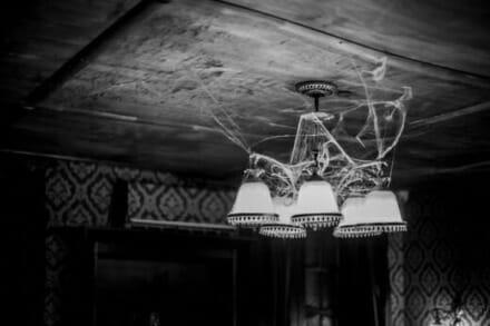 иллюстрация 3 для квеста Дом призраков Ростов